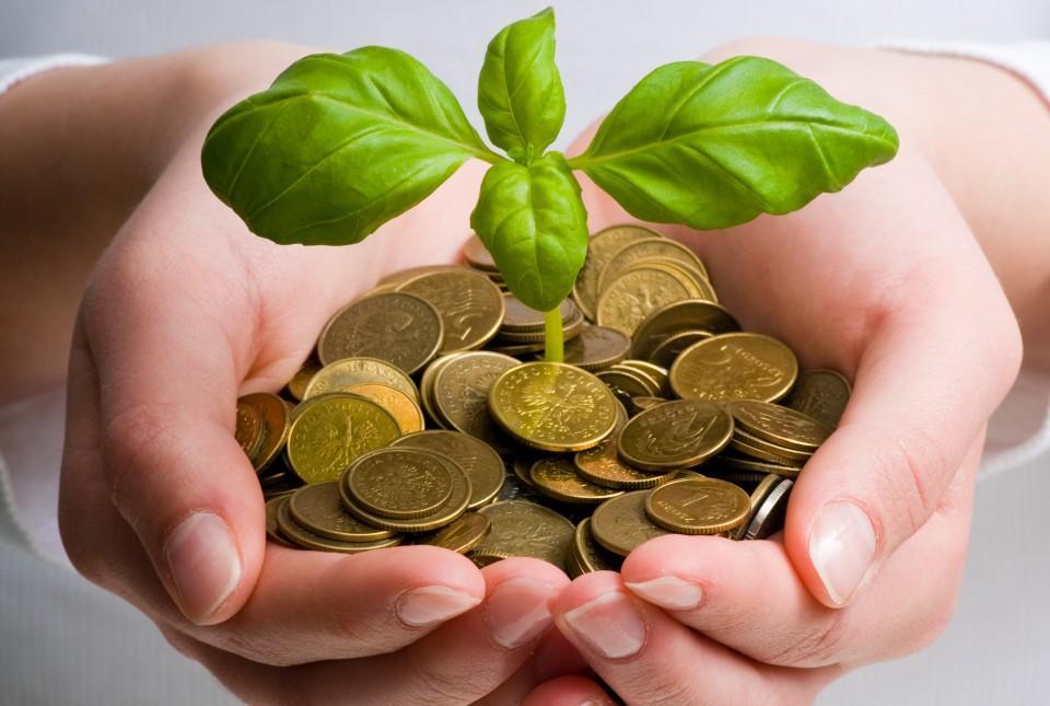 крюгеры какие, фото приносящее деньги и успех в работе всего надо определиться