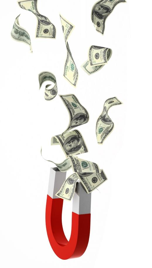 картинка магнит для денег и удачи многолетнего